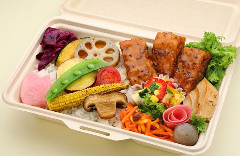 10種の有機野菜とテンペのマスタード醤油ソース弁当